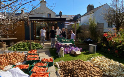 'Good Grub' delivering fruit & veg to schoolkids affected by Covid-19