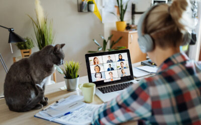 Remote internships: the challenges & opportunities within the virtual office